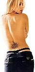 sexy thongs  tn-tho-018.jpg